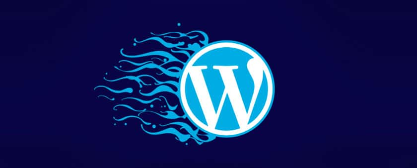 En İyi ve En Önemli WordPress Eklentileri