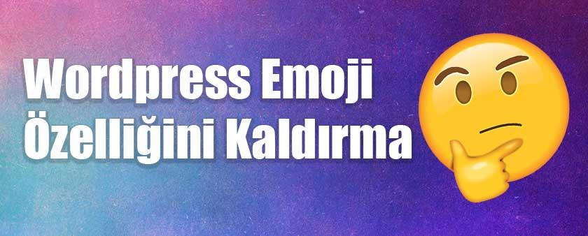 WordPress emoji kullanımını kaldırarak hız artışı sağlayın