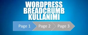 wordpress-breadcrumb-schema