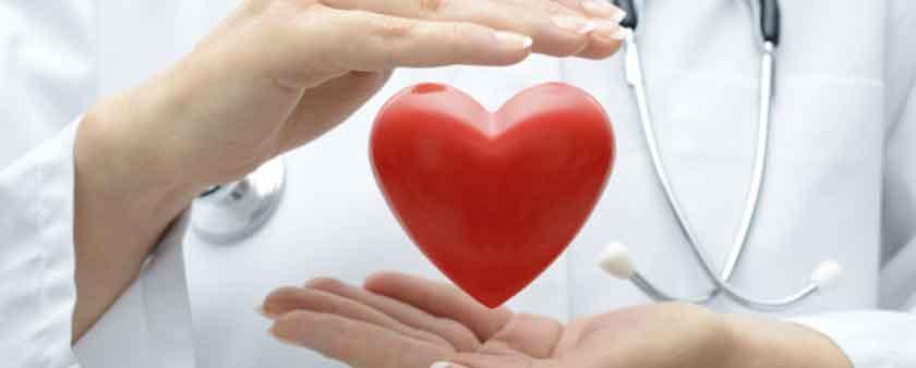 Türk Kalp Vakfı Kuruluş Amacı Nedir ? Kalp Vakfı Ne İşe Yarar ?