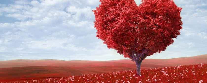 uzun ve kısa sevgililer günü mesajları