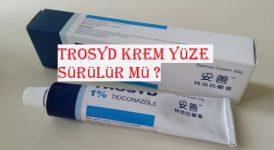 Trosyd